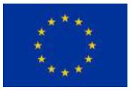 Image EU flag