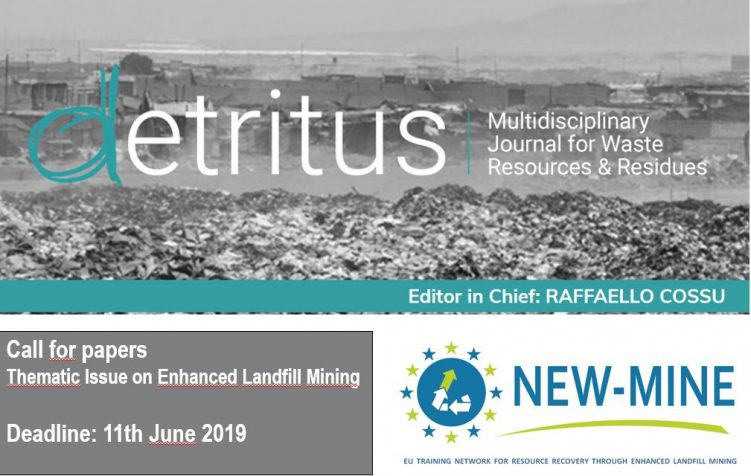 Key visual Detritus ELFM Thematic Issue